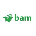 BAM Construct